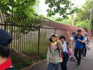 写真 2015-05-29 14 15 24